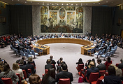 United Nations Security Council session