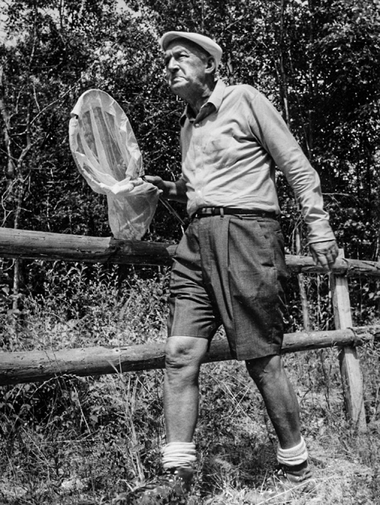 Vladimir Nabokov during an entomologist excursion