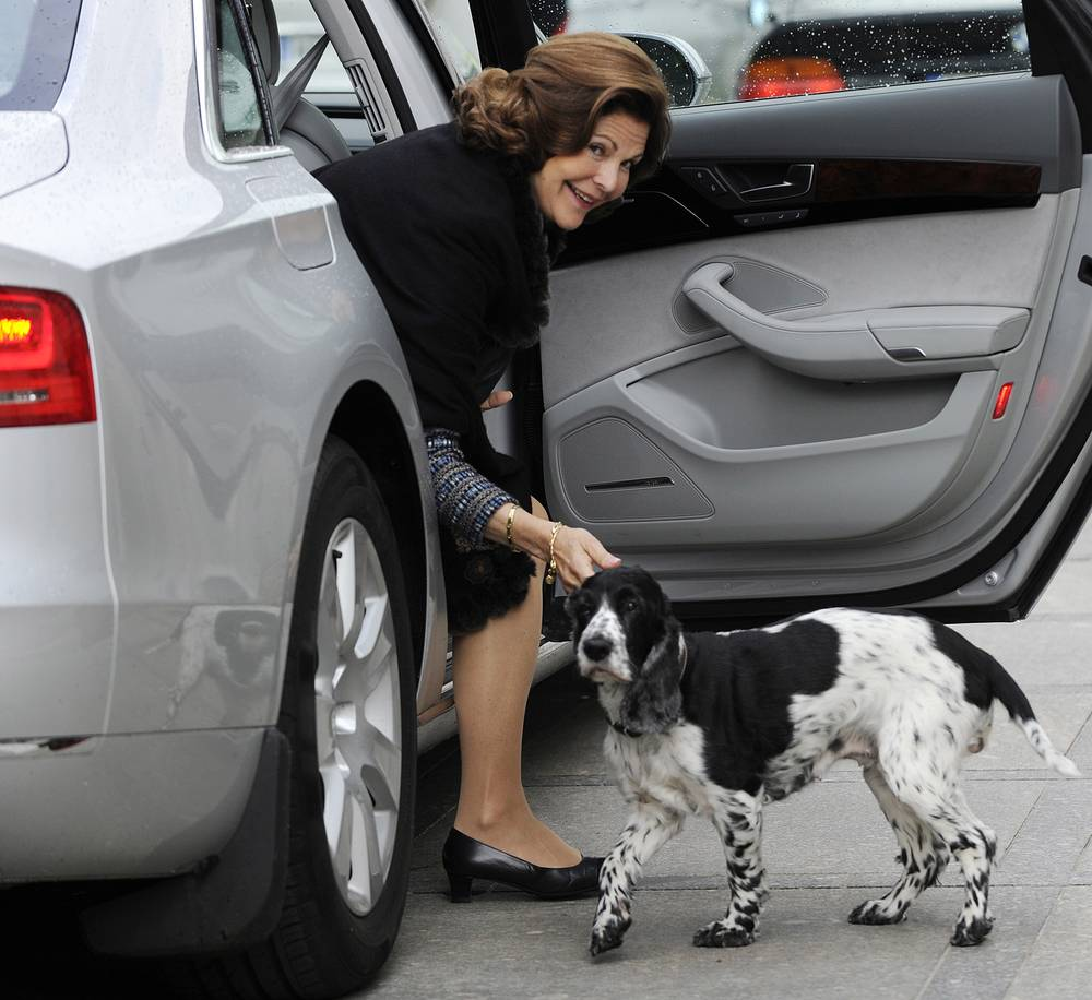 Poland's President Bronislaw Komorowski has a dog named Draka. Photo: Draka greets Queen Silvia of Sweden during her visit to Poland in 2011