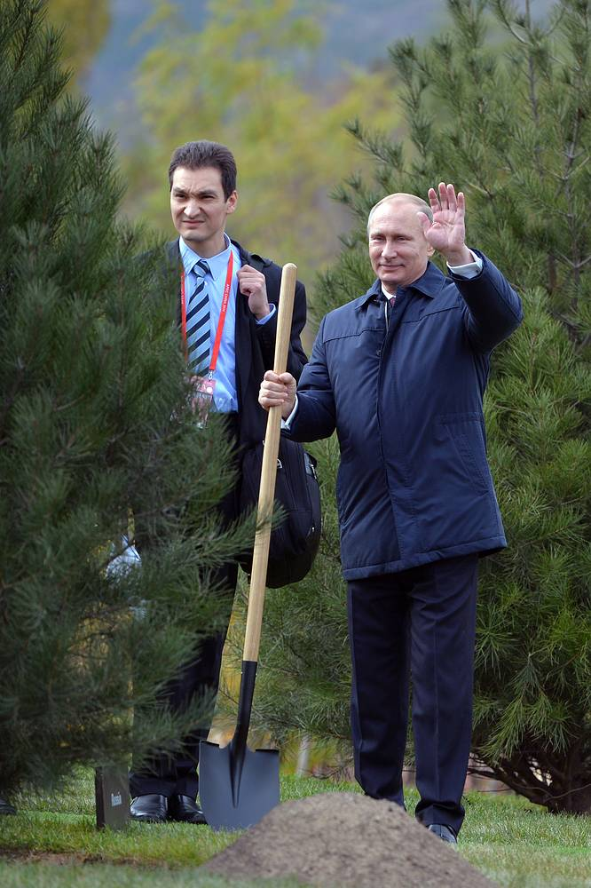 Russian president Vladimir Putin during a tree planting ceremony as part of the Asia Pacific Economic Cooperation (APEC) summit in Beijing