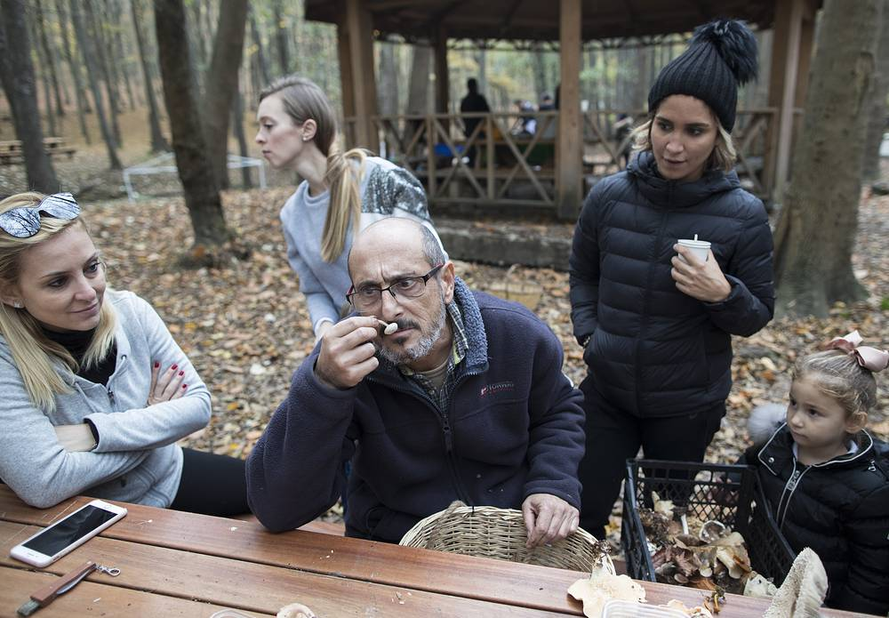 Mushroom pickers examining a 'major find' at Belgrade Forest in Istanbul, Turkey, November 19