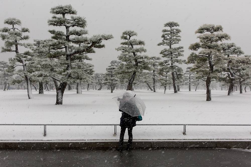 A woman takes a photograph of the snowfall on the grounds of the Imperial Palace in Tokyo