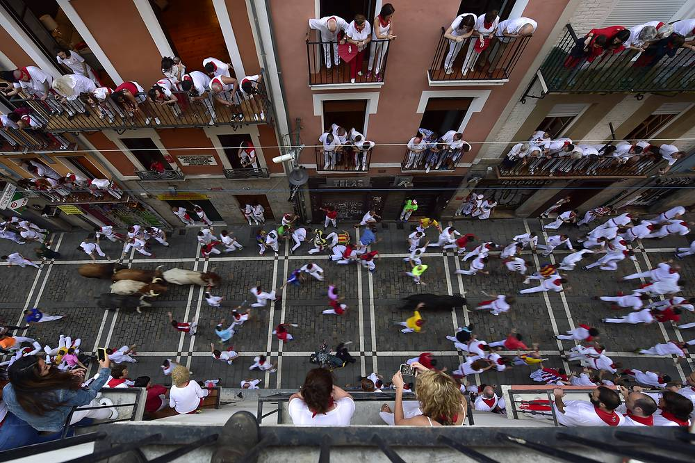 People run next to fighting bulls from the Cebada Gago ranch and steers during the third day of the running of the bulls at the San Fermin Festival in Pamplona, Spain