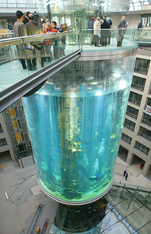 One of the most unusual aquariums is AquaDom in Berlin. The one-million-liters seawater aquarium, which is 25 meters high, has a build-in elevator that visitors can ride