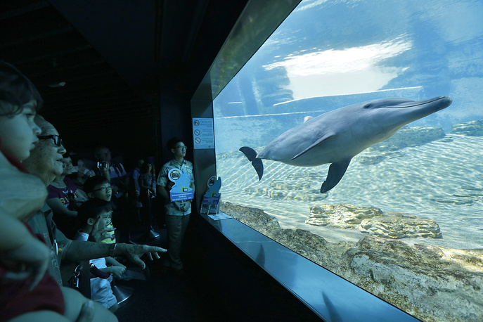 Singapore Marine Life Park holds the World Guiness record for the largest aquarium in the world, as well as the world's largest viewing panel, measuring 36-meter wide and 8.3-meter tall. Photo: Visitors at Marine Life Park in Singapore