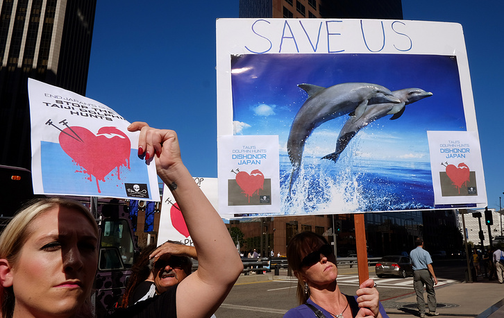 Animal-rights advocates rally protesting the slaughter and capture of dolphins in Taiji, Japan