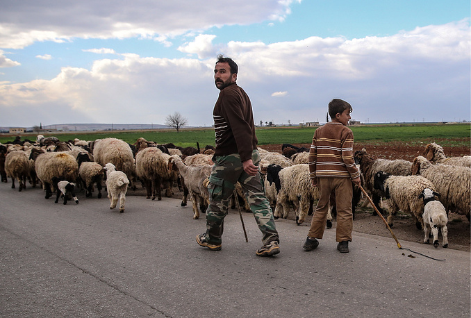 Shepherds with a flock of sheep on a road to Aleppo