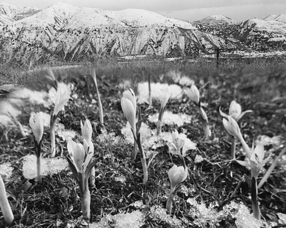 Spring in the mountains, Armenian SSR, 1987