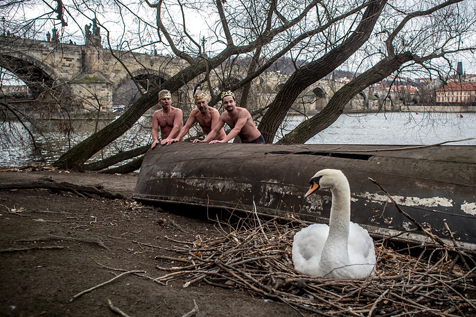 Polar swimmers join the traditional Three Kings Swimming in the Vltava river in Prague, January 6