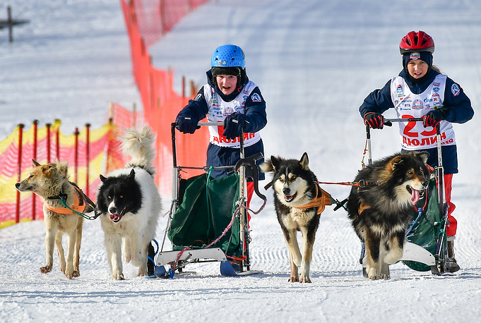 Participants in the Dyulin sled dog race for children held as part of the 2019 Beringia international sled dog race at the Vitaly Fatyanov biathlon complex, February 21