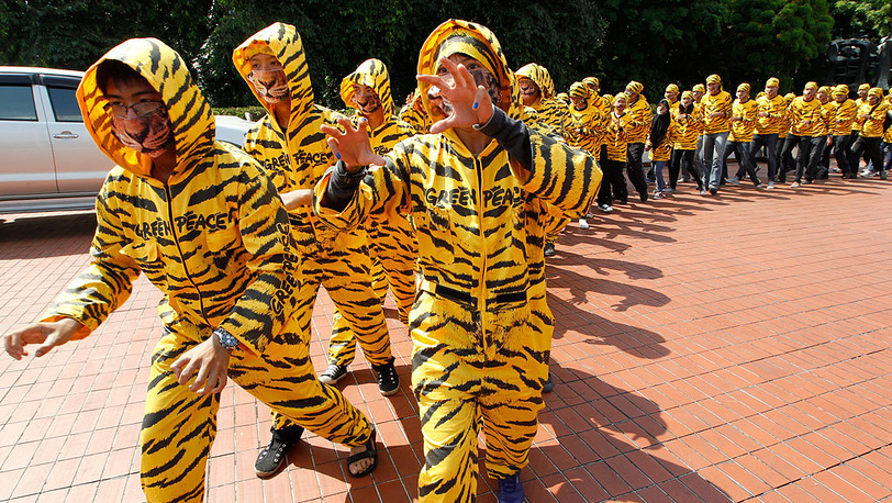 Flash mob in tiger costumes, Jakarta, 2012