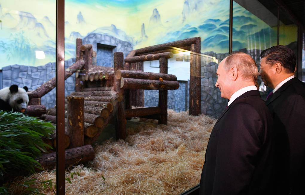 Russia's President Vladimir Putin (L) and China's President Xi Jinping visit the Moscow Zoo where a panda pavilion has opened  Alexander Vilf/POOL/TASS