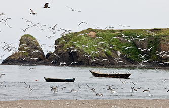 At the Kuril islands